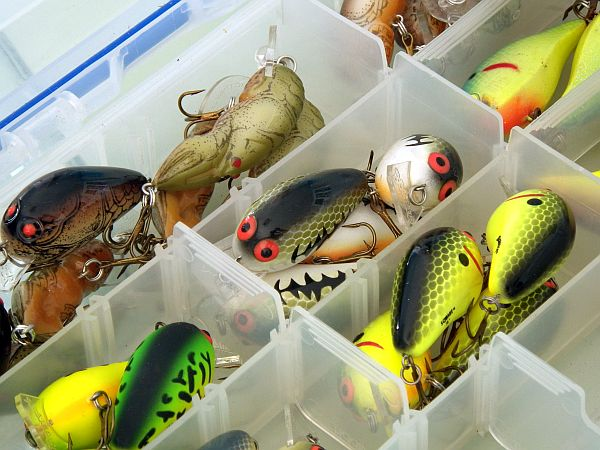 spring crankbait fishing
